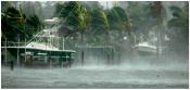 Hurricane Wilma Program Management and Inspection photo