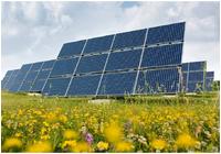 Solar Farm Site Evaluations photo