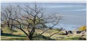 Prince George's County Coastal Flood Risk Reduction Program photo